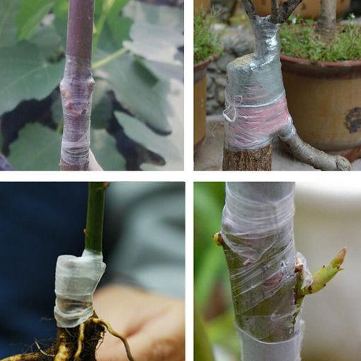 Picture of Honana HG-GT4 100m Flower Vegetable Grafting Tape Garden Degradable Plants Seedling Tools