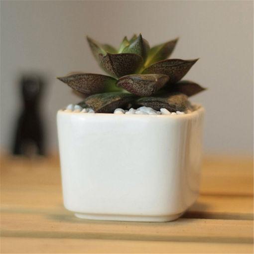 Picture of Outdoor White Ceramic Planter Mini Flower Pot Succulent Plants Square Garden Patio Desk Decor