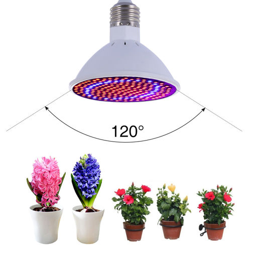 Picture of 20W E27 166 Red 34 Blue LED Grow Light Plant Lamp Bulb Garden Greenhouse Plant Seeding Light